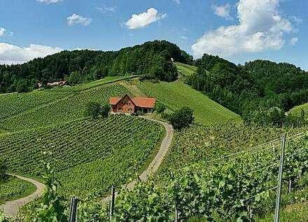 Weingut in begehrter Alleinlage Nähe Leutschach