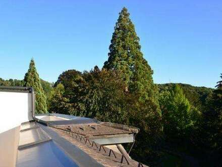 130m2 Luxus Wohntraum mit Dachterasse. Kombination aus Historie u.Moderne im steirischen Thermenland
