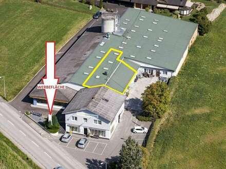 129m² barrierefrei, hell und sonnig - die Fläche ist variabel!