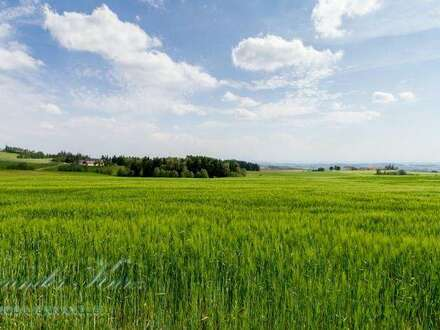 Gepflegte Landwirtschaft in Oberösterreich