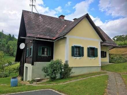 Weststeirisches Bauernhaus in idyllischer und sonniger Lage am Weinberg