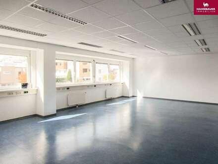 Büro - 165 m2 südlich von Wien Brunn am Gebirge