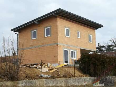 Ziegelmassiv - Neubau- Einfamilienhaus