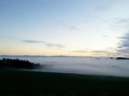 Top 1 - Haus 2: Old Mountain: Leben über der Nebelgrenze