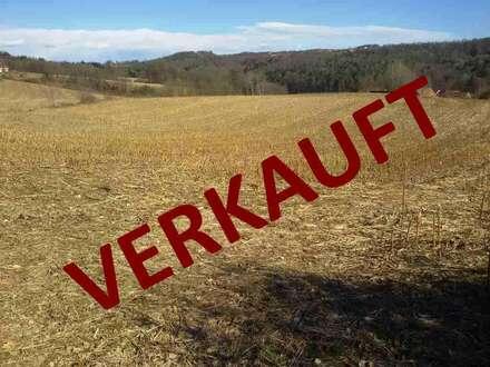 SÜDOSTSTEIERMARK: Landwirtschaftliche Flächen mit circa 5,6 Hektar (Errichtung einer Haus und Hofstelle möglich)