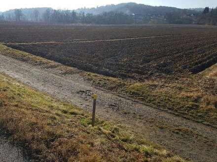 Landwirtschaft mit 12 Hektar
