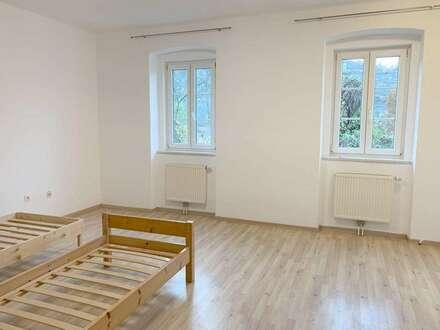 Neu renovierte, gut aufgeteilte Wohnung!