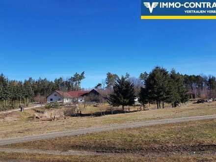 Waldviertler Drei-Kant-Bauernhof in Streusiedlungslage mit Einzellagecharakter