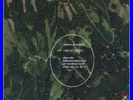 8 ha arrondierter Wald bei Zell am See - 1827