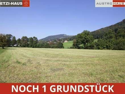 Micheldorf - Weinzierl: Ihr Ziegelhaus + Grund ab €410.409,-