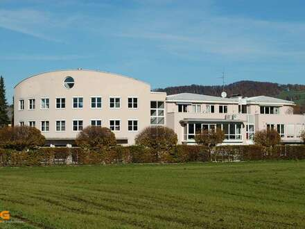 Salzburg Süd - Repräsentative Büros/Showrooms in Toplage zu vermieten