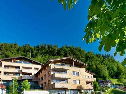Attraktive 2-Zimmer Ferienwohnung im sonnigen Brandnertal, Bürserberg