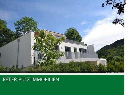 ERSTBEZUG - Luxusvilla (V2)