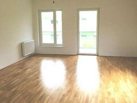 Viel Licht - 3 Zimmer + Balkon in herrlicher Lage