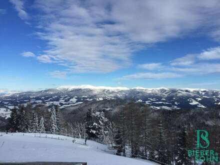 Traum-Almhütten in traumhafter Skiregion