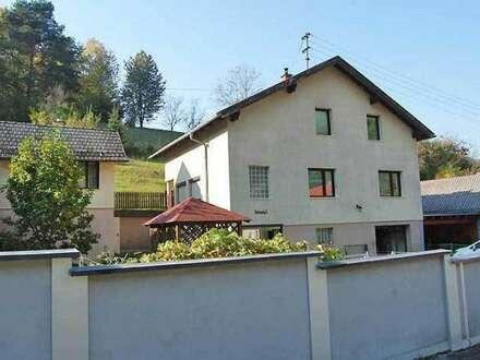 Großes Einfamilienhaus, Obj. 12415-SZ