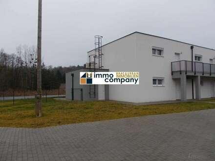 Stegersbach Bezirk Güssing Eigentumswohnung 62 m²