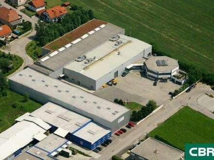 Temperaturgeführte Logistikflächen in Stockerau