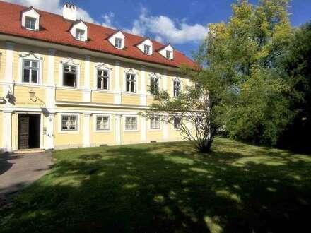 Historische Büro- Ordinationsräume im Saggen