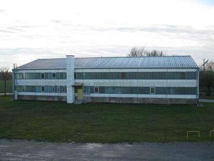 HALLE mit Büros in Enzersdorf/Fischa