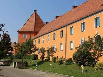 Preiswerte, schöne Singlewohnung im Erdgeschoss - voll möbliert - ruhig und sonnig am grünen Ortsrand