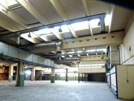 Sensationsmiete - Betriebsobjekt ab 800m² im Bereich Baden/Traiskirchen