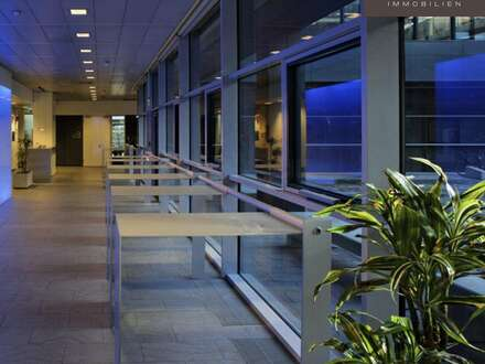 Modernes Büro am Wienerberg im EURO PLAZA