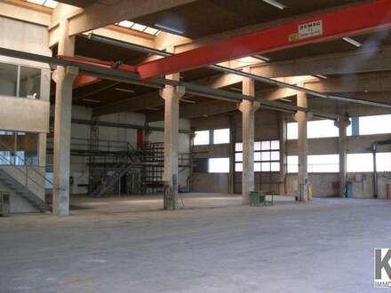 K3!!! Bischofshofen - Halle für Betriebsansiedlung oder Lager zu vermieten