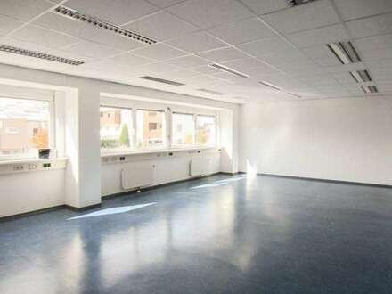 Büro - 345m² südlich von Wien in Brunn am Gebirge