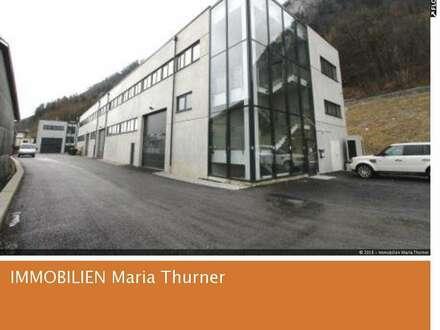 Büro- bzw. Dienstleistungsfläche in Salzburg/Hallein Kauf - Neubau