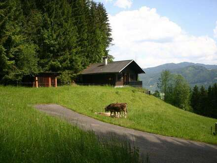 """""""Mitten im Wald"""" in den steirischen Bergen!"""