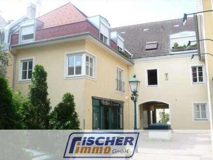 Büro/Ordination/Kanzlei am Theaterplatz - in der Fußgängerzone von Baden!/101