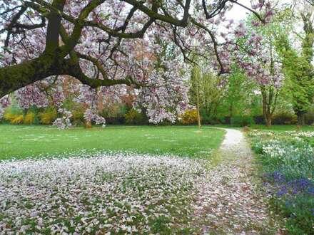 Exklusive Immobilien: 2 Villen im Landhausstil, umgeben von einer prächtigen Gartenlandschaft!