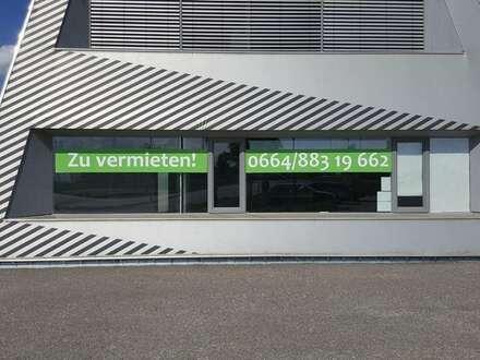 Modernes Geschäftslokal an der Ortseinfahrt Deutsch-Wagram - 1