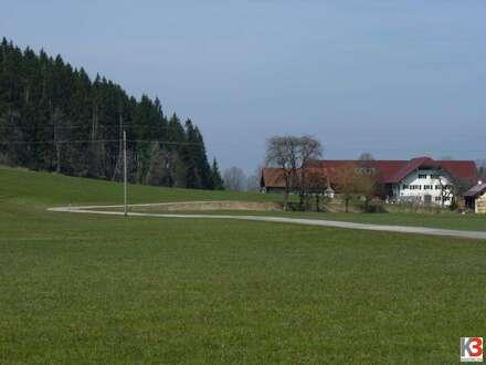 Bauernhof mit Stall auf 3,75 ha Hoffläche