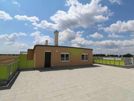 PAUL & Partner: ERSTBEZUG & PROVISIONSFREI: Traumhafte Dachgeschoßwohnung mit riesiger Loggia!