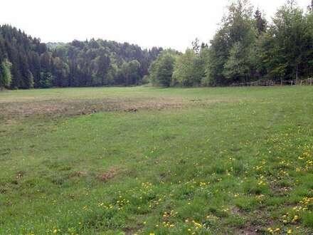 Faakerseenähe Naturjuwel: Absolute Alleinlage mit 5 ha Grund in Ruhelage