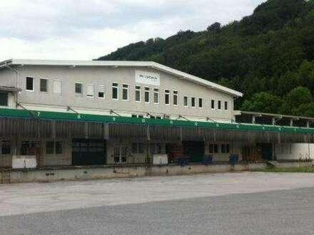 330 m² Büroflächen in Bergheim