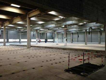 Hallen für Produktion, Lager etc. in den alten Semperit Werken Traiskirchen