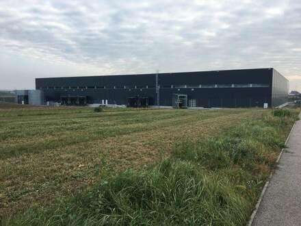 Logistikzentrum Wien Nord - direkt an der S1 und A5 - Büro Lager Logistik