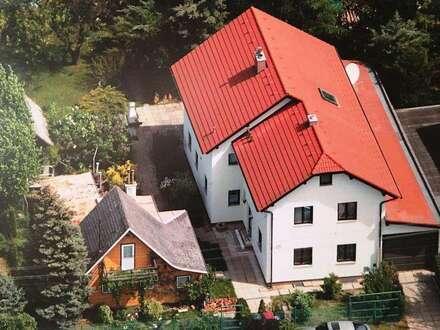 Modernes Einfamilienhaus in ruhiger Wohngegend mit sehr großem Garten
