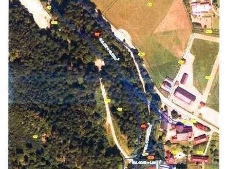 Waldparzellen nähe Zinkenbach in St. Gilgen