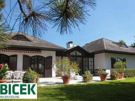 Exquisite bungalow-style villa near Danube-National-Park