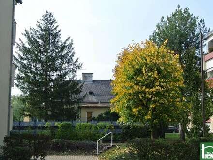 Platz für IHR Hochbeet- Traumwohnung mit Sonnenbalkon am Liesingbach, EKZ Riverside.