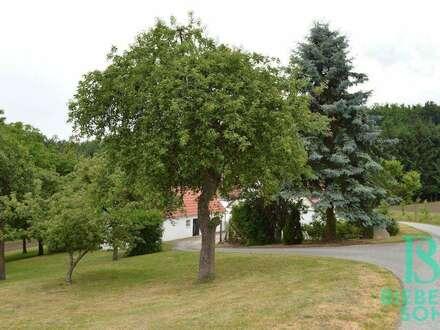 Ein Stück Ruhe und Glück; kleines teilmöbliertes Haus am Waldrand in Einzellage, auch als Zweitwohnsitz möglich