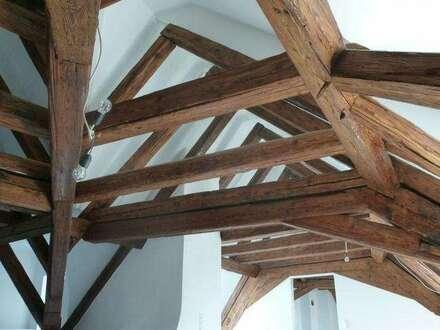 ... Erleben Sie die Geschichte Wiens hautnah - Wohnen in einem der ältesten Häuser Wiens!