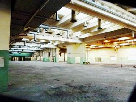 Sensationsmiete - Betriebsobjekt 3.200 m² im Bereich Baden/Traiskirchen