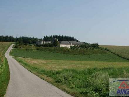 Bauernhof in Alleinlage im niederösterrreichischen Zentralraum
