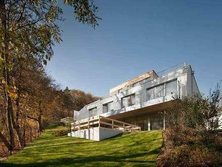 Traumvilla mit Wienerwaldblick - Villa I