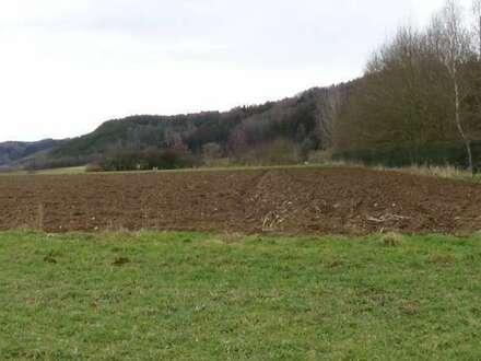 Großes Grundstück geignet für Gewerbe-Ansiedlung Mattighofen Umgebung
